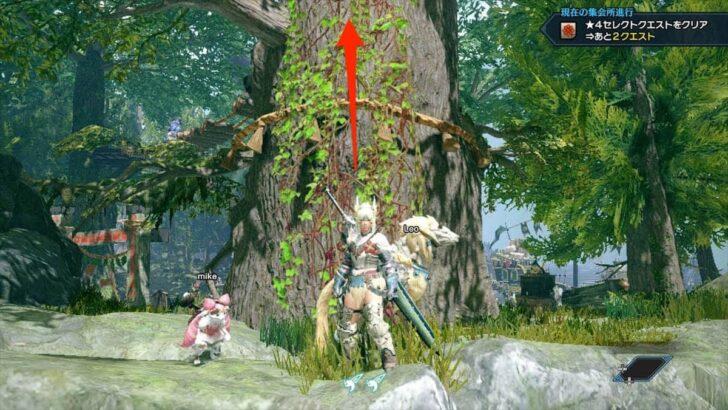 ツタで上れるようになっているので、大樹の上へ