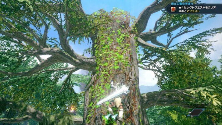 ツタで上れるようになっているので、大樹の上へ2